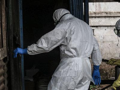 В США вылечили еще одного заболевшего лихорадкой Эбола