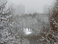Теплая погода в Москве пока сохраняется