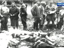 МИД Украины готов признать вину за Волынскую резню