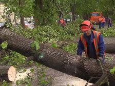 На Москву обрушился самый разрушительный ураган за последние 100 лет