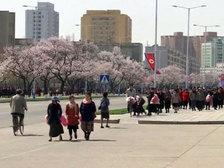 """Пхеньян: США - """"ядерное государство -преступник"""""""