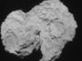 Сенсация или фантазия: есть ли жизнь на комете Чурюмова-Герасименко?