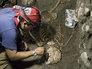 В Мексике откопали стену из человеческих черепов
